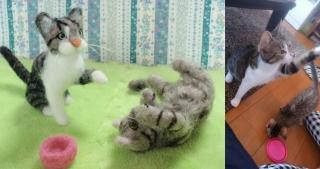セツ子さん家の猫P7190030 - コピー-masumi