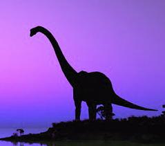 恐竜夕暮れ
