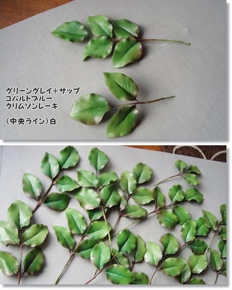 大輪のバラ葉