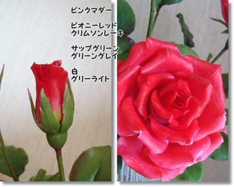 大輪のバラ色