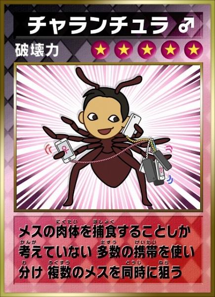 card-02.jpg
