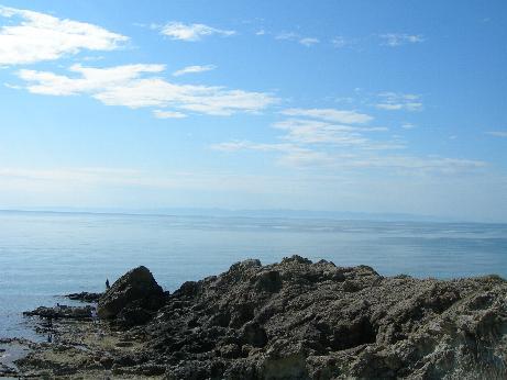 佐渡を見る海
