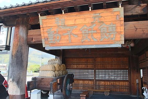 17富士芝桜2