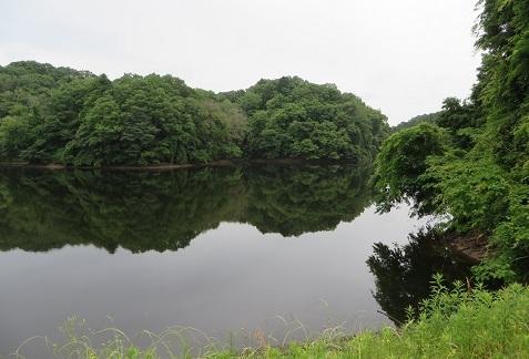 山上の沼・1
