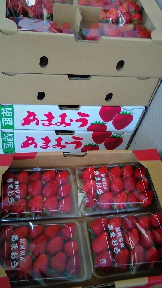 0429苺