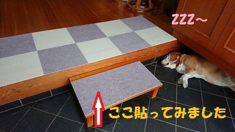 DSC_0174.jpg