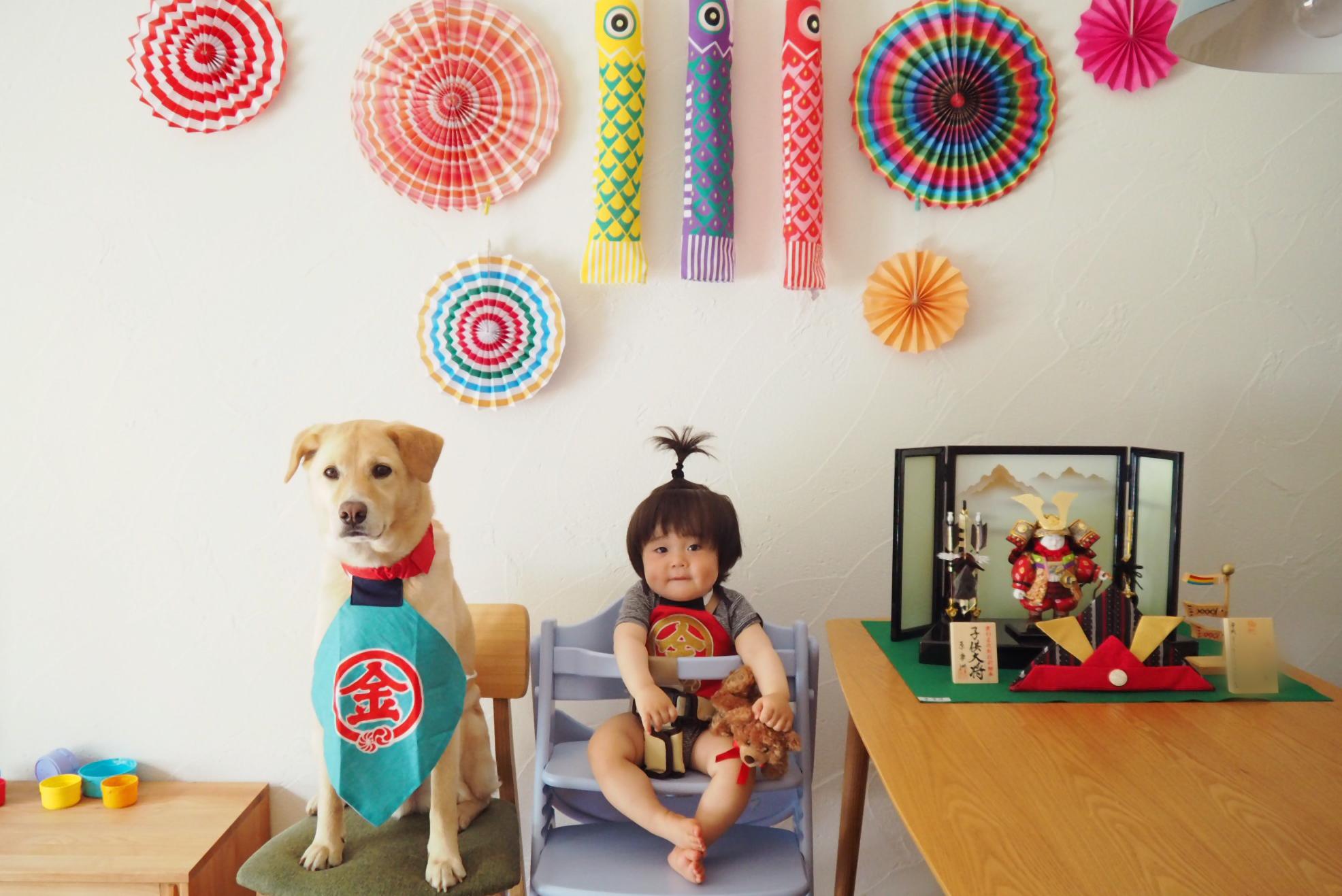 赤ちゃんと犬 子供と犬 初節句 飾り