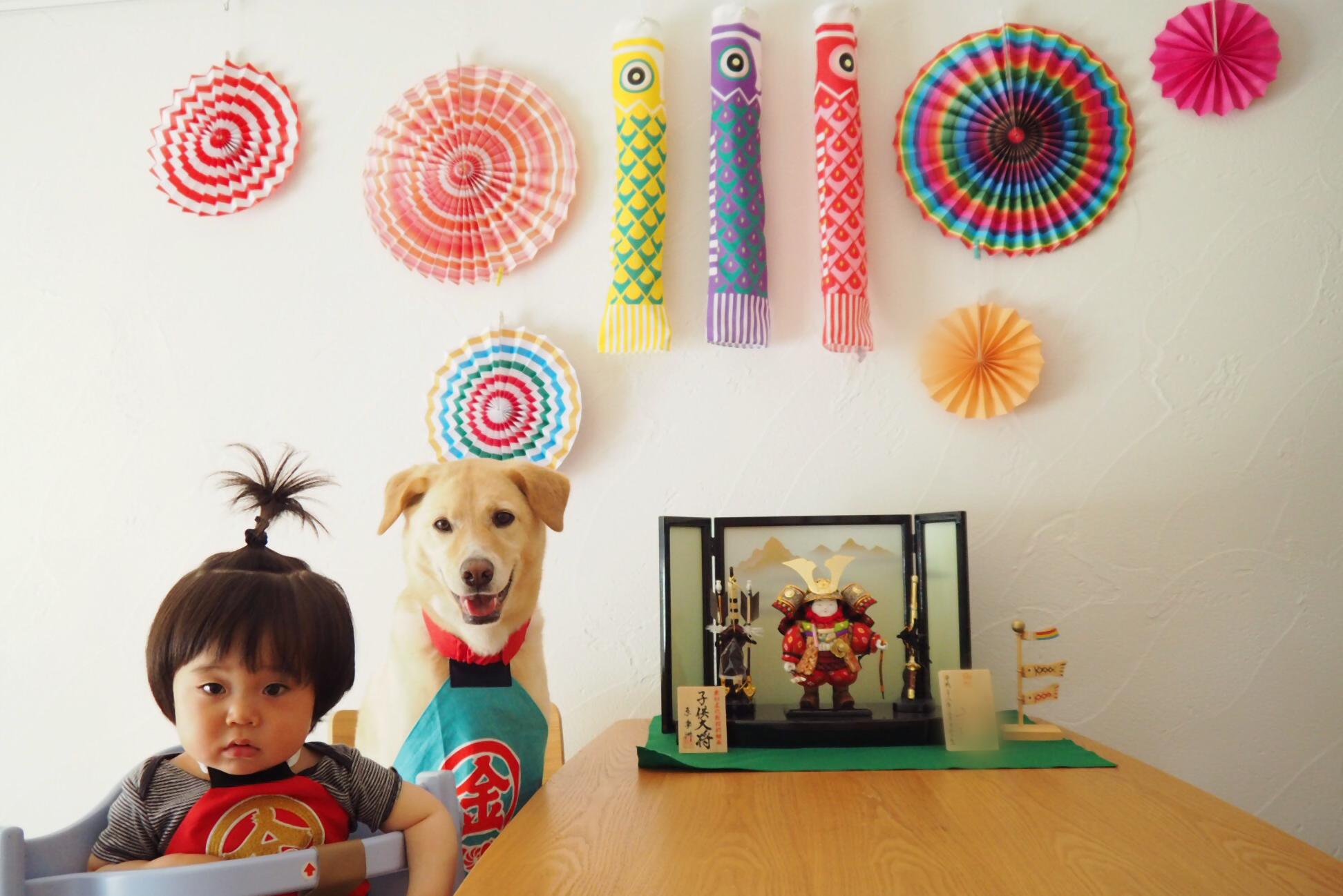 赤ちゃんと犬 子供と犬 初節句 飾り オシャレ