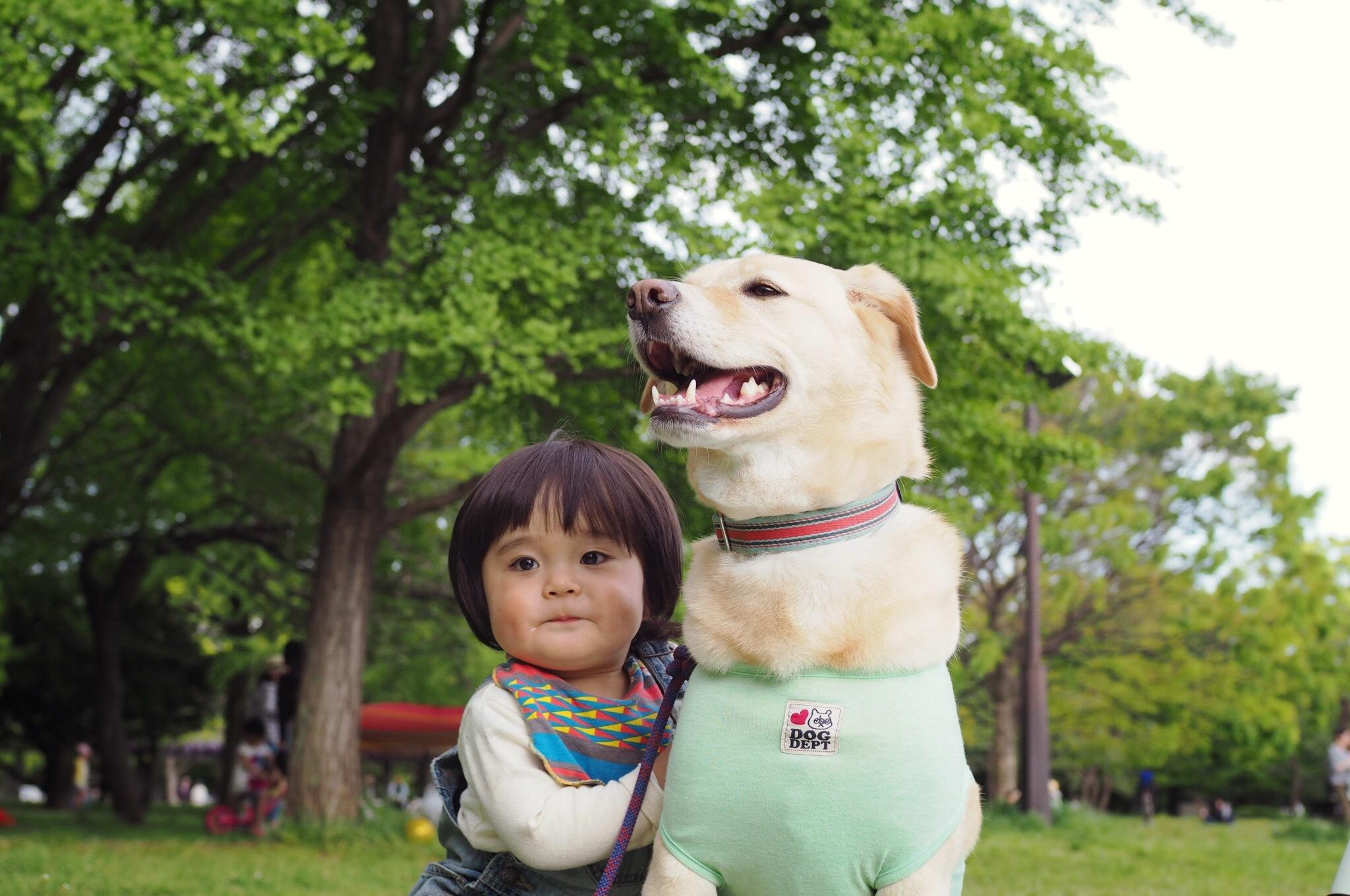 子供と犬 赤ちゃんと犬 子供と大型犬 赤ちゃんと大型犬