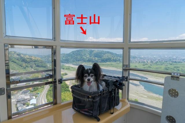 伊豆旅行1 -03