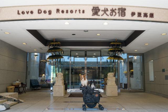 愛犬お宿-011