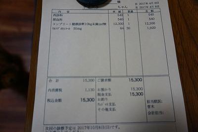 s-DSC00578.jpg
