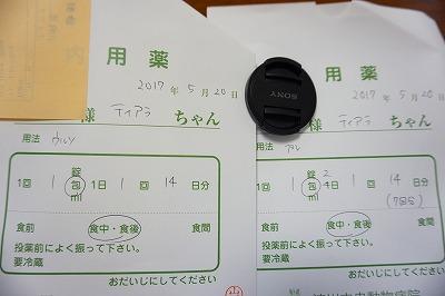 s-DSC00872.jpg