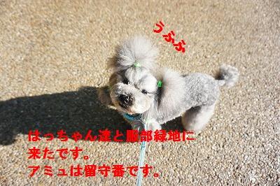 s-DSC01064.jpg