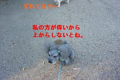 s-DSC01091.jpg