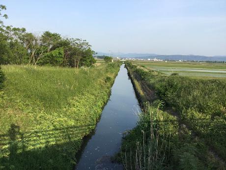 1705kanagawa02.jpg