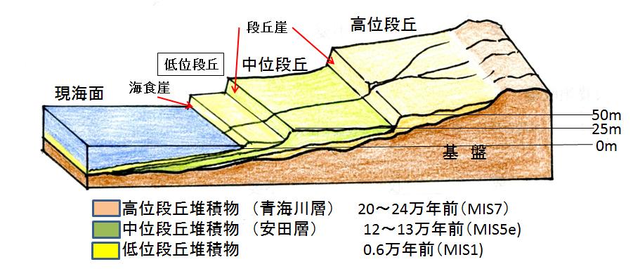 段丘構成層