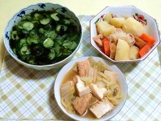 170509_4632 胡瓜のワカメの酢の物・肉じゃが・白菜と厚揚げの煮物VGA