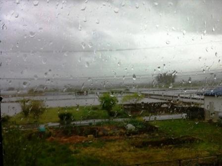 雨がシトシト