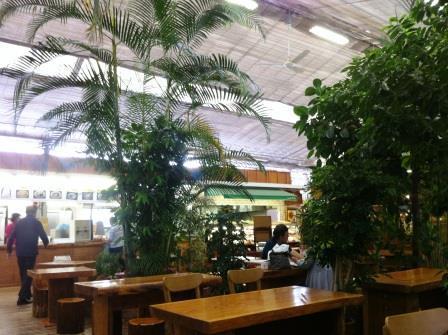 温室のレストラン