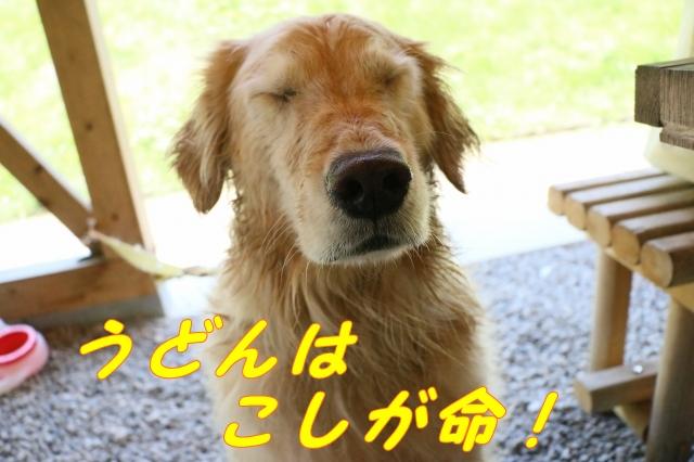 IMG_8794-12.jpg