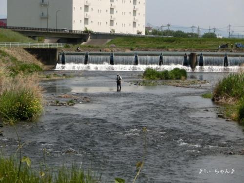 前橋サイクリング_02
