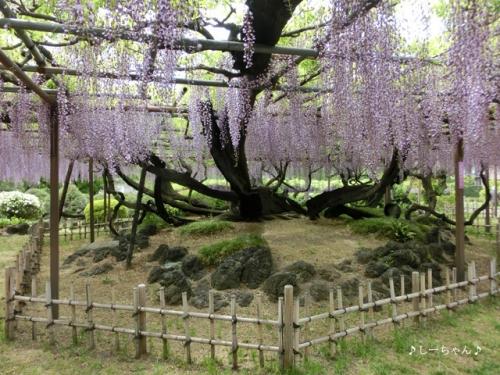 須賀の園_03