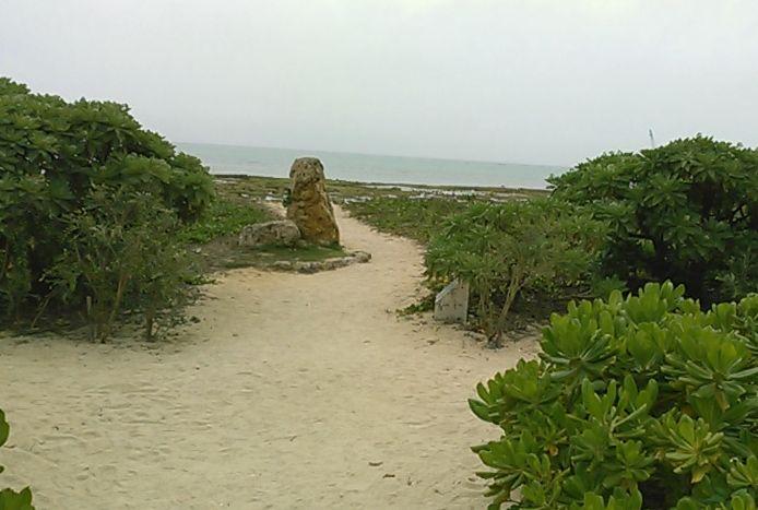 浜辺を散策