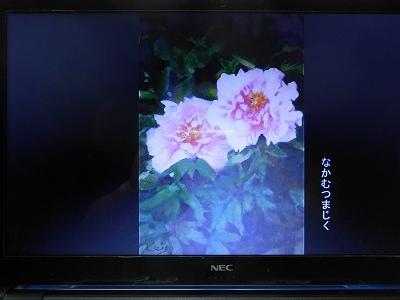DSCN5187.jpg