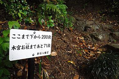 2017051351.jpg