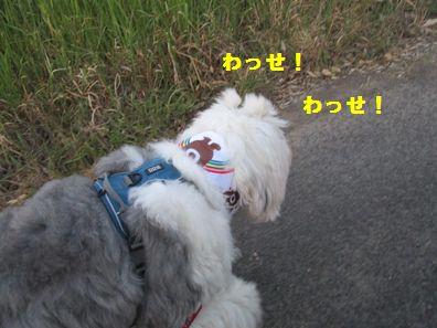 IMG_1479.jpg