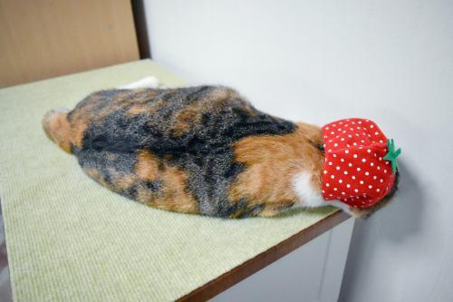 みくイチゴ寝