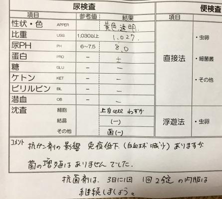 IMG_5576.jpg