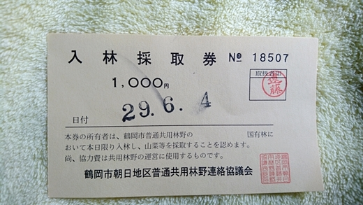 20170604-01.jpg