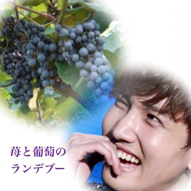 苺と葡萄のランデブー_convert_20170701144133