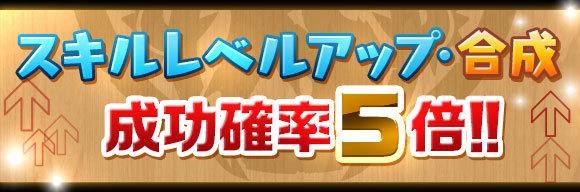 skill_seikou5x_201706161656056e1.jpg