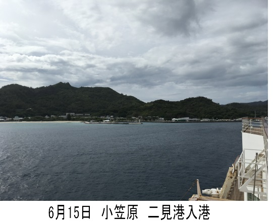 6月15日 小笠原1