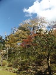 20170501藤田記念庭園4