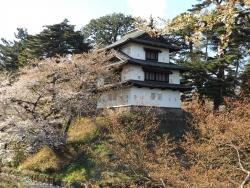 20170501弘前城桜11