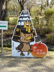 20170501弘前城桜17