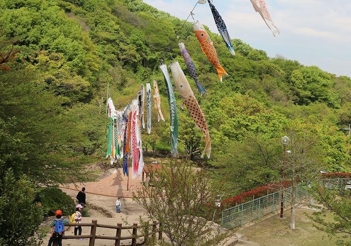 不動の滝こいのぼり 29.4.2