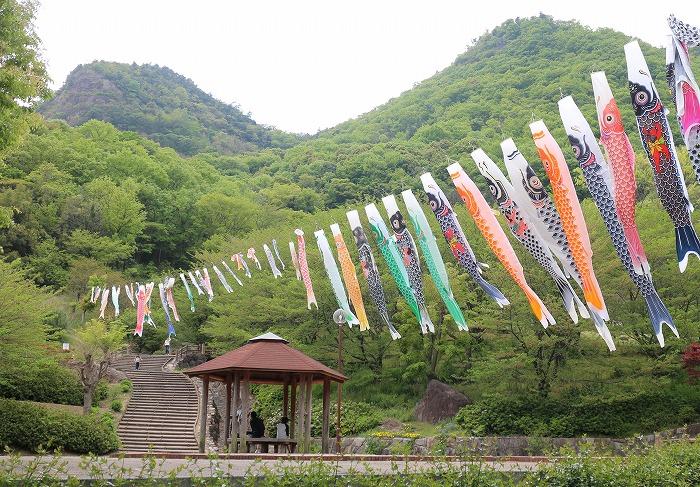 こいのぼり並んで 不動の滝公園 29.4.2