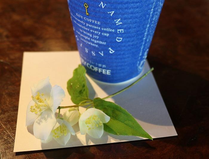 五月梅の花と美味しいコーヒー 29.5.18