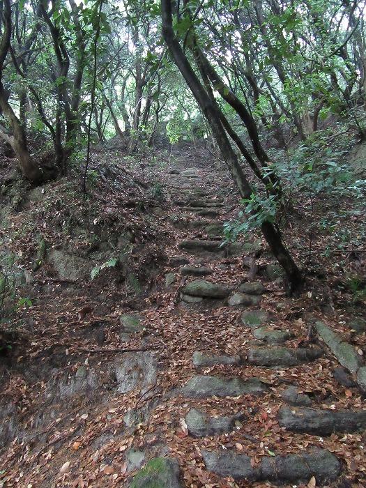 天霧山横道石段 29.5.24