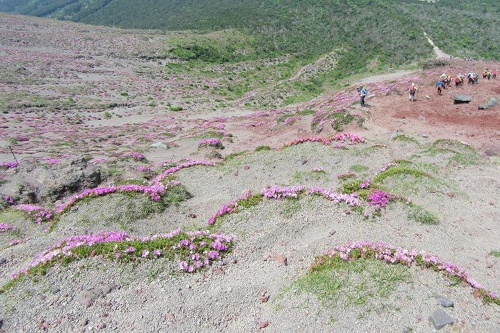 高千穂の峰下山開始 29.6.3