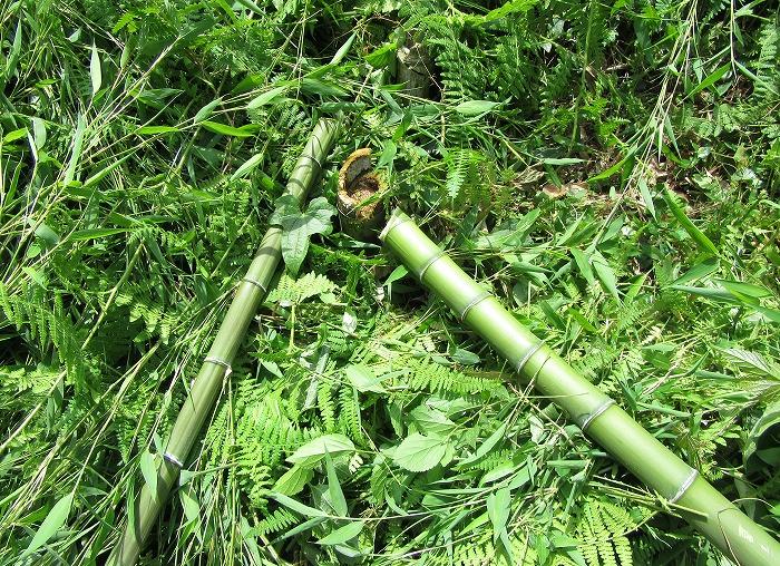 志々島草刈り真竹も刈る 29.6.13