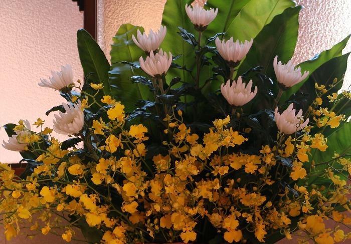お花 29.5.17