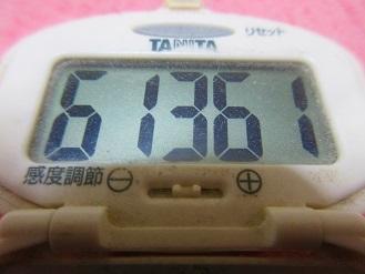 170430-291歩数計(S)