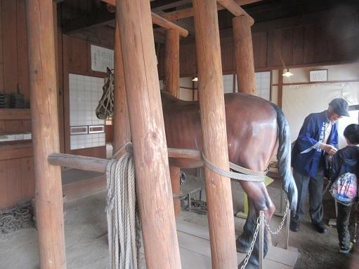 170505-225馬(S)