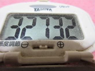 170507-291歩数計(S)